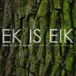 Ek is Eik; Anne Vanschothorst, harp